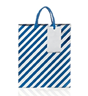 Striped Medium Gift Bag