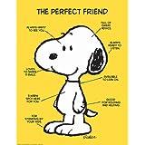 Eureka Peanuts The Perfect Friend Poster