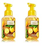 Bath & Body Works Gentle Foaming Hand Soap in Sunshine & Lemons (2 Pack)