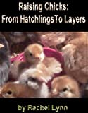 Raising Chicks: From Hatchlings To Layers