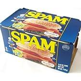 SPAM スパム ポークランチョンミート クラシック 缶詰 1パック(340g×6個入)×24セット