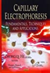 Capillary Electrophoresis: Fundamenta...