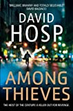 David Hosp Among Thieves