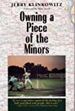 Owning a Piece of the Minors (Writing Baseball)