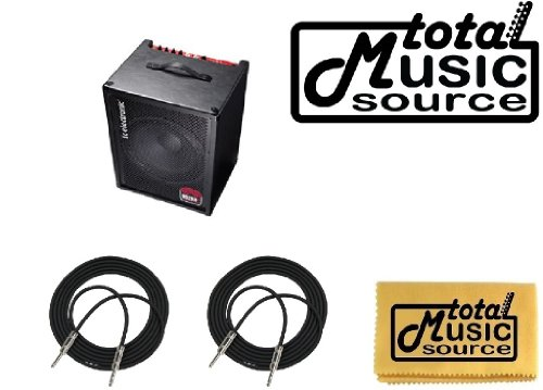 Tc Electronic Bg250-115 1X15 250-Watt Bass Combo Amplifier Free 20' Cables & Tms Polish Cloth