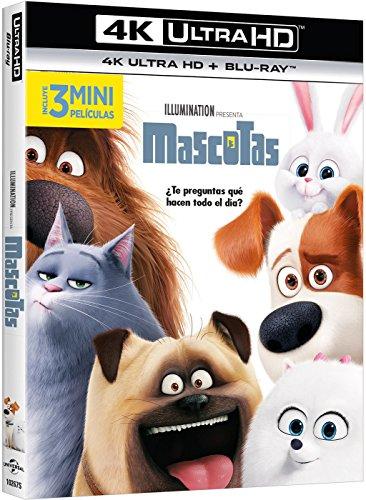 mascotas-4k-ultra-hd-blu-ray