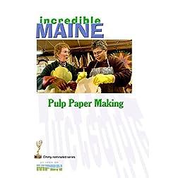 iM-213 Pulp Paper Making