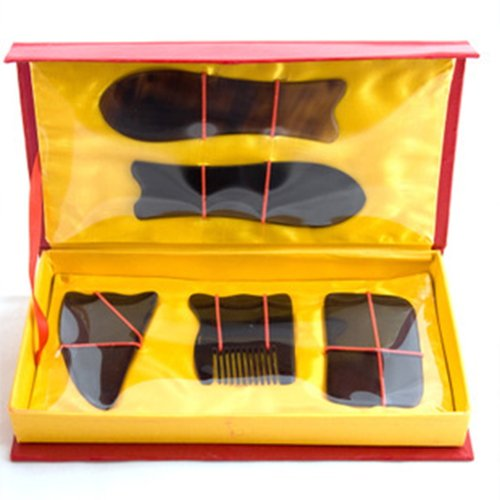 Chinese Traditional Gua Sha Acupuncture Massage Tool Set 5pcs Gift