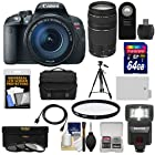 Canon EOS Rebel T5i Digital SLR Camera & EF-S 18-135mm IS STM Lens with EF 75-300mm III Lens + 64GB Card + Battery + Case + Flash + 3 Filters Kit