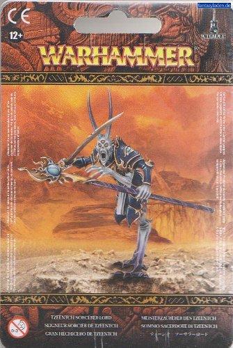 Warriors of Chaos: Tzeentch Sorcerer Lord (2011)
