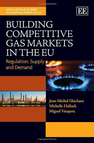 Building Competitive Gas Markets in the EU: Regulation, Supply and Demand (The Loyola De Palacio Series on European Energy Policy)
