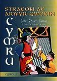 Straeon Ac Arwyr Gwerin Cymru: Cyfrol 2 (Welsh Edition)