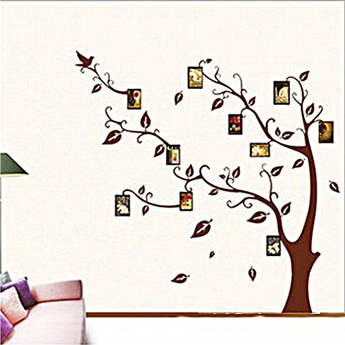 coffled-colorful-and-diverse-memory-tree-photo-frame-wall-decal-stickersremovable-bright-vinyl-wall-