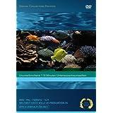 """Marine Aquarium [Special Collector's Edition]von """"Timm Hogerzeil"""""""