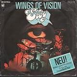 Wings Of Vision