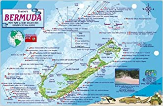 Bermuda Dive Map & Reef Creatures Guide Franko Maps Laminated Fish Card
