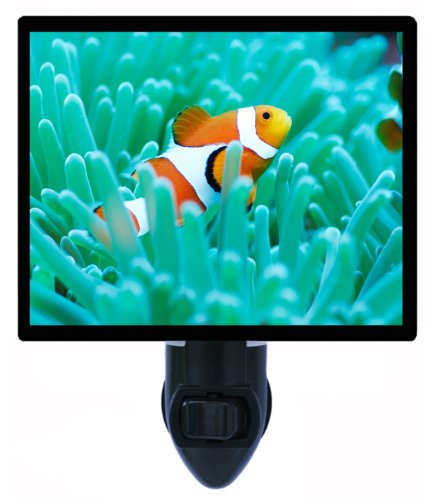 Clown Fish Night Light - Tropical Led Night Light front-1006803