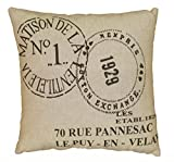 L.R. Resources LR07235-NA1818 Contemporary Accent Pillow, Natural