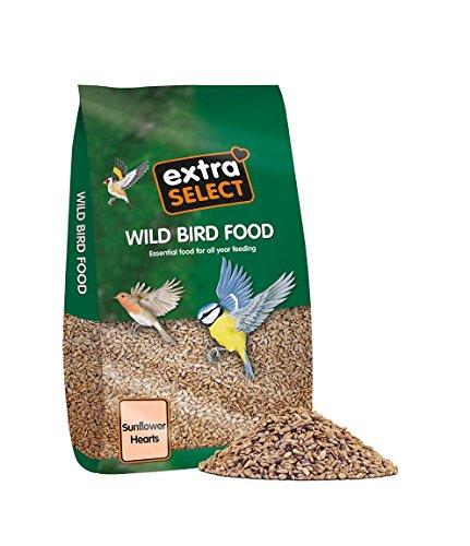 extra-select-sunflower-hearts-bird-food-20-kg