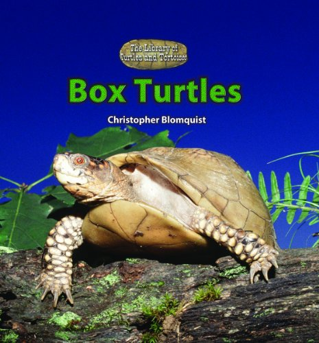 Box Turtles (The Library of Turtles and Tortoises)