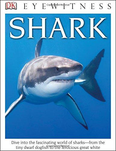 CASINO.DK SHARK BITE