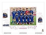 なでしこジャパン 2017カレンダー 壁掛け