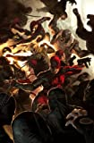 Daredevil: Hell to Pay - Volume 2 (Daredevil; The Devil Inside and Out)