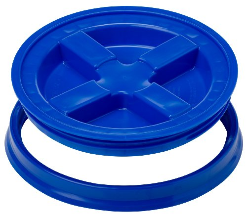 Gamma Seal Lid- Blue