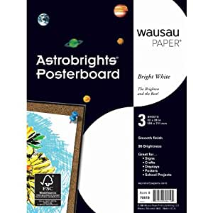 Wausau Paper Astrobrights Premium Poster Board, 3-Sheets, Bright White, 22 x 28-Inch (70619)