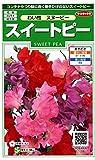 サカタのタネ 実咲花6466 スイートピー わい性スヌーピー 00906466