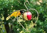 Copper Heart Bird Fruit Feeder
