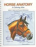 Horse Anatomy : A Coloring Atlas