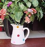 Garden XP Ceramic Spotty Jug Planters