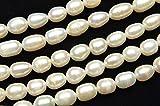 【 福縁閣 】淡水真珠パール ライス ホワイト 7~8mm 1連(約35cm)_R1922-7/A4-4 天然石 パワーストーン ビーズ