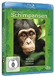 Image de Schimpansen [Blu-ray] [Import allemand]