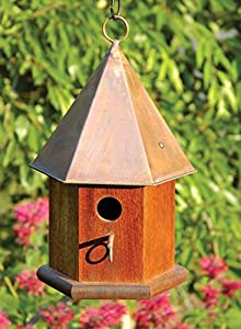 Copper Songbird Bird House Finish: Solid Mahogany with Shiny Copper Roof