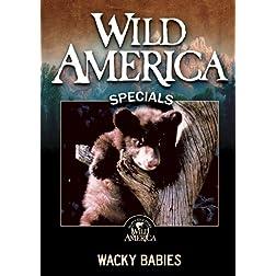 Wacky Babies