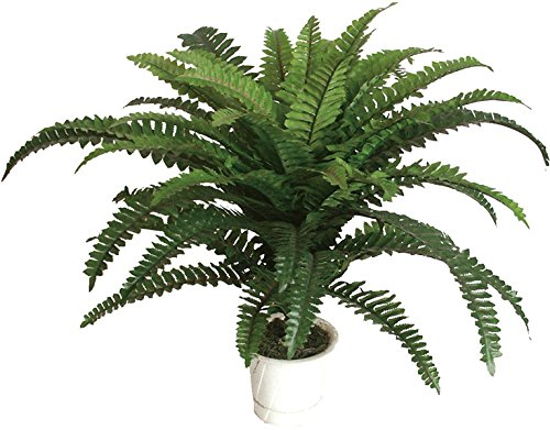 best-artificial-lot-60-cm-2-m-bureau-tropical-fern-plante-interieur-exterieur-jardin-veranda-arbre