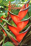 img - for Images of Hawaii's Flowers: A Pictorial Guide to the Aloha State's Flowering Plants by Loye Guthrie (1996-08-02) book / textbook / text book
