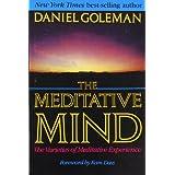 The Meditative Mind: The Varieties of Meditative Experience ~ Daniel Goleman
