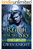 Reach for the Sky (Wolffe Peak Book 1)