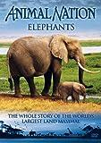 echange, troc Animal Nation - Elephants: the Whole Story [Import anglais]