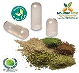 Neem-Blatt Kapseln Kit 100% Reines Kräuter 100 X 750 mg