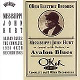 echange, troc Mississippi John Hurt - Avalon Blues: Complete 1928 Okeh Recordings
