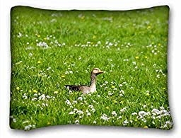 Custom Characteristic Animal Rectangle Pillowcase 20x26 inches (one side) suitable for Twin-bed