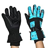 Womens Professional Warm & Windproof Insulated Winter Ski Gloves with Interior Lining