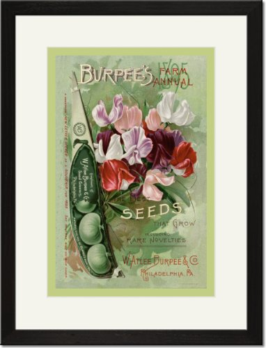 Black Framed/Matted Print 17x23, Burpee's Farm Annual: The Best Seeds That Grow