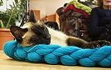 Pet Bett