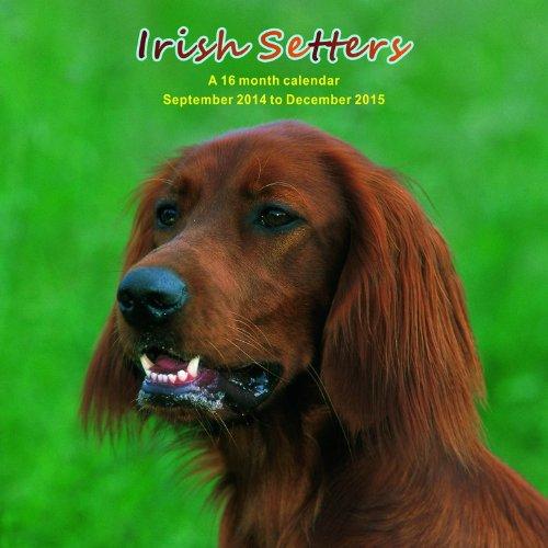 51UIYrhlQ2L 2015 Dog Calendars