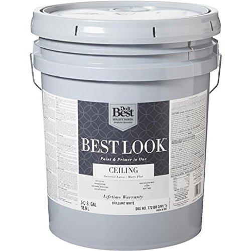 brlnt-wht-ceiling-paint-hw36w0840-20